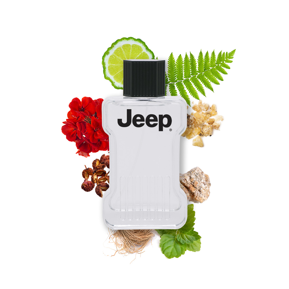 Jeep Freedom Eau de Toilette